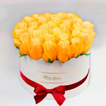 Caja Blanca de Rosas amarillas