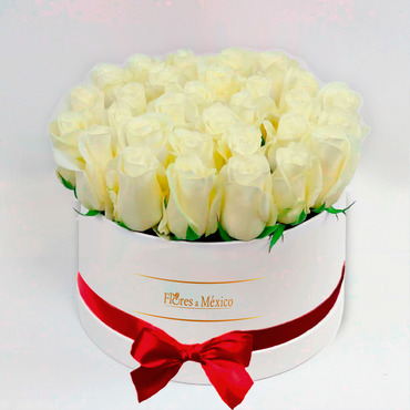Caja Blanca de Rosas Blancas