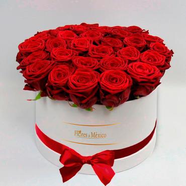 Caja Blanca de Rosas Rojas