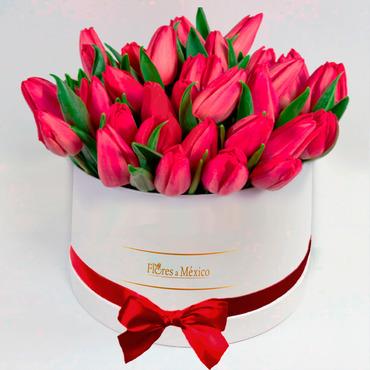 Caja Blanca de Tulipanes