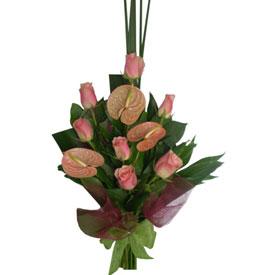 Rosas & Anturios